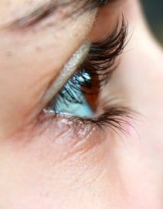 lash lift services in bedford, ma